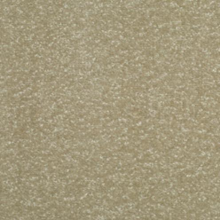 Champion Twist Carpet - Soft Silk